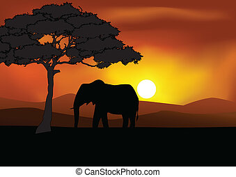 silhouette, safari, fond