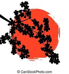 Silhouette sakura branch in background of the sun