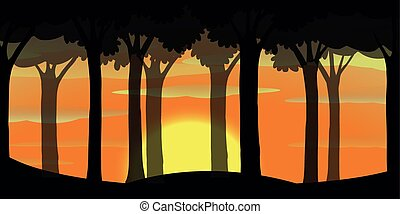 Silhouette scene of forest at sunset