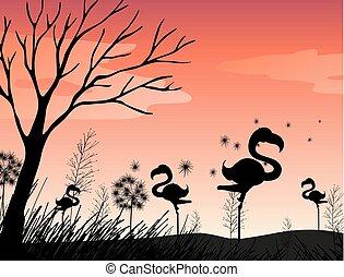 Silhouette scene with flamingo in the field