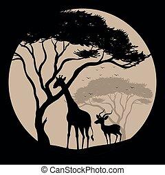 Silhouette scene with giraffe and gazelle
