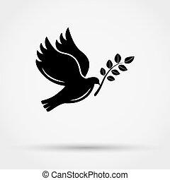 silhouette, schwarzer hintergrund, grau, taube, fliegendes, shadow., zweig