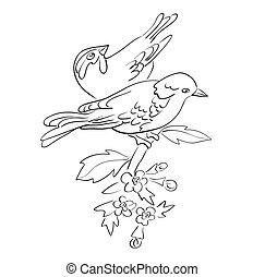silhouette, sedere, coppia, -, vettore, ramo, fiori, uccelli