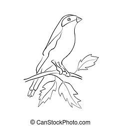 silhouette, sedere, -, vettore, ramo, uccello
