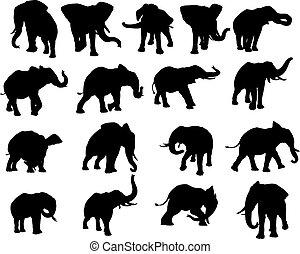 silhouette, set, elefante