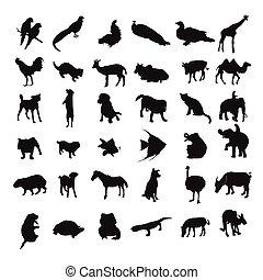 silhouette set of animals