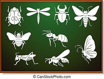 Silhouette set of many bugs