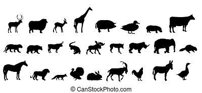 silhouette, set, vettore, animali