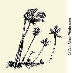 silhouette, sketch., bäume, vektor, handfläche, gezeichnet
