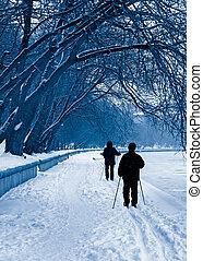 silhouette, skiers, nevicata