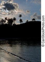silhouette, spiaggia, tropicale, remoto, Figi, paesaggio