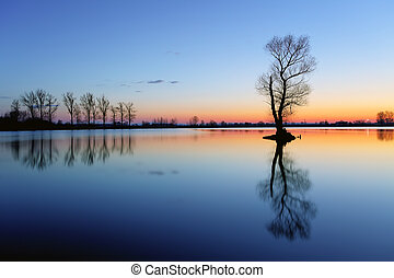 Silhouette tree at sunset in lake