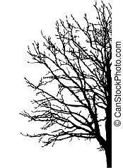 silhouette tree on white background