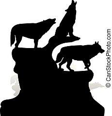 silhouette, ululando, cima, tre, cartone animato, fondo, nero, scogliera, lupi bianchi