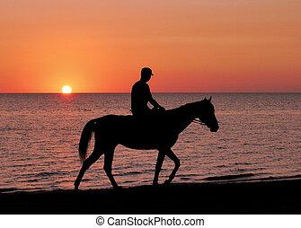 silhouette, van, de, passagier, en, paarde