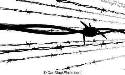 silhouette, van, de, stekelig, wire.