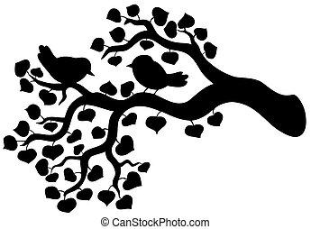 silhouette, van, tak, met, vogels