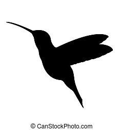silhouette., vecteur, 10., eps, oiseau