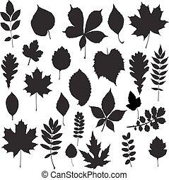 silhouette, vecteur, -, collection, feuille
