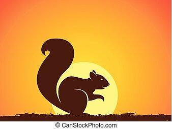 silhouette, vecteur, coucher soleil, écureuil
