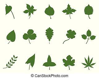 silhouette, vecteur, feuille, vert