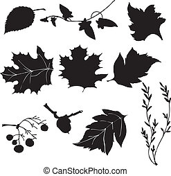 silhouette vector leaves