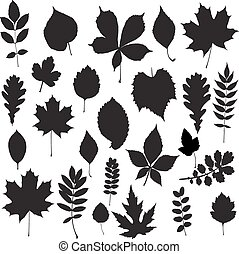 silhouette, vector, -, verzameling, blad
