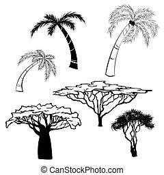 silhouette, vektor, abbildung, hintergrund, schwarz, bäume, afrikas, weißes
