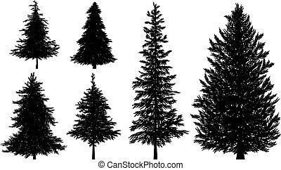 silhouette, vektor, oder, kiefer, weißes, bäume, hintergrund...