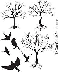 silhouette, vettore, uccelli, albero