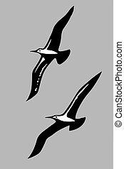 silhouette, vettore, uccelli, mare