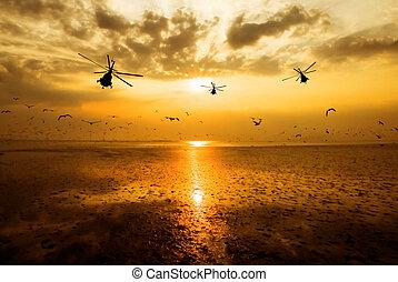 silhouette, von, der, militärischer hubschrauber, bewegen, in, himmelsgewölbe, an, sonnenuntergang, und, schöne , möwe, in, der, heller himmel