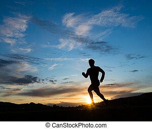 silhouette, von, läufer