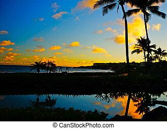 silhouette, von, palmen