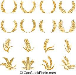 silhouette, von, wheat., getreide, vektor, symbole, freigestellt, weiß