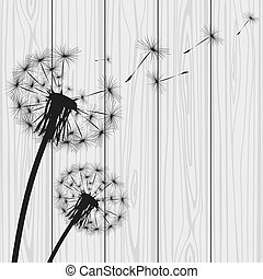 Silhouette with flying dandelion buds Vector illustration
