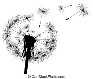 silhouette with flying dandelion buds on a white background