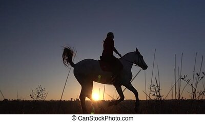 Silhouette woman with horse on field. Slow motion