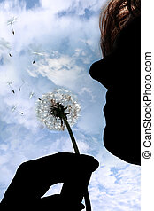 a silhouetted beautiful dandelion being gently blown by a middle aged woman in a garden against a cloudy sky