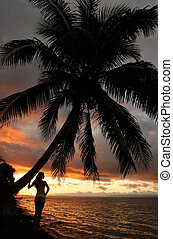 Silhouetted young woman by the palm tree on a beach, Vanua Levu island, Fiji, South Pacific
