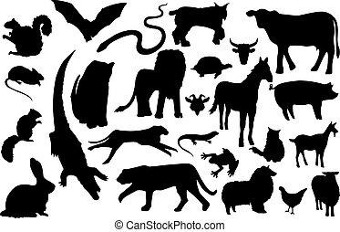 silhouetten, verschiedenes, tier