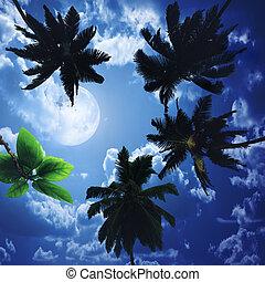 silhouetten, von, palmen, auf, der, künstlerisch, hintergrund