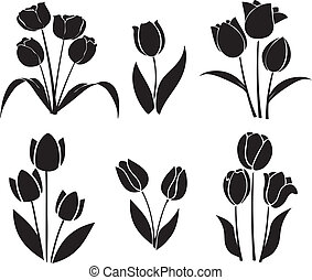 silhouetten, von, tulpen, vektor