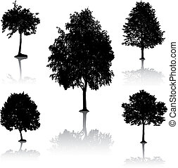 silhouettes., 木, [vector].