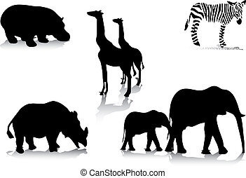 silhouettes, animal, africaine
