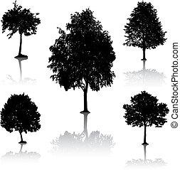 silhouettes., arbre, [vector].