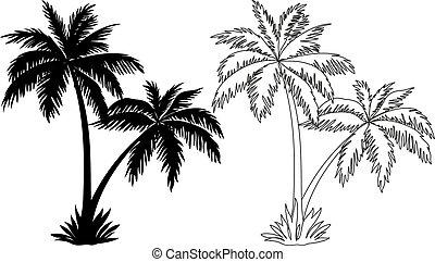 silhouettes, arbres, paume, contours