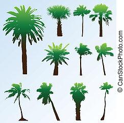 silhouettes., bewerken, verzameling, vector, palmbomen, ...