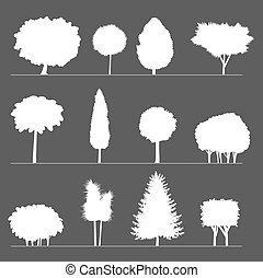 silhouettes, bushes., bomen