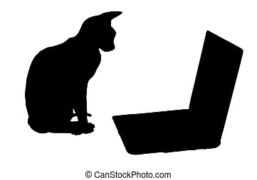 Silhouettes: cat and laptop - Cat sits near laptop. Black...